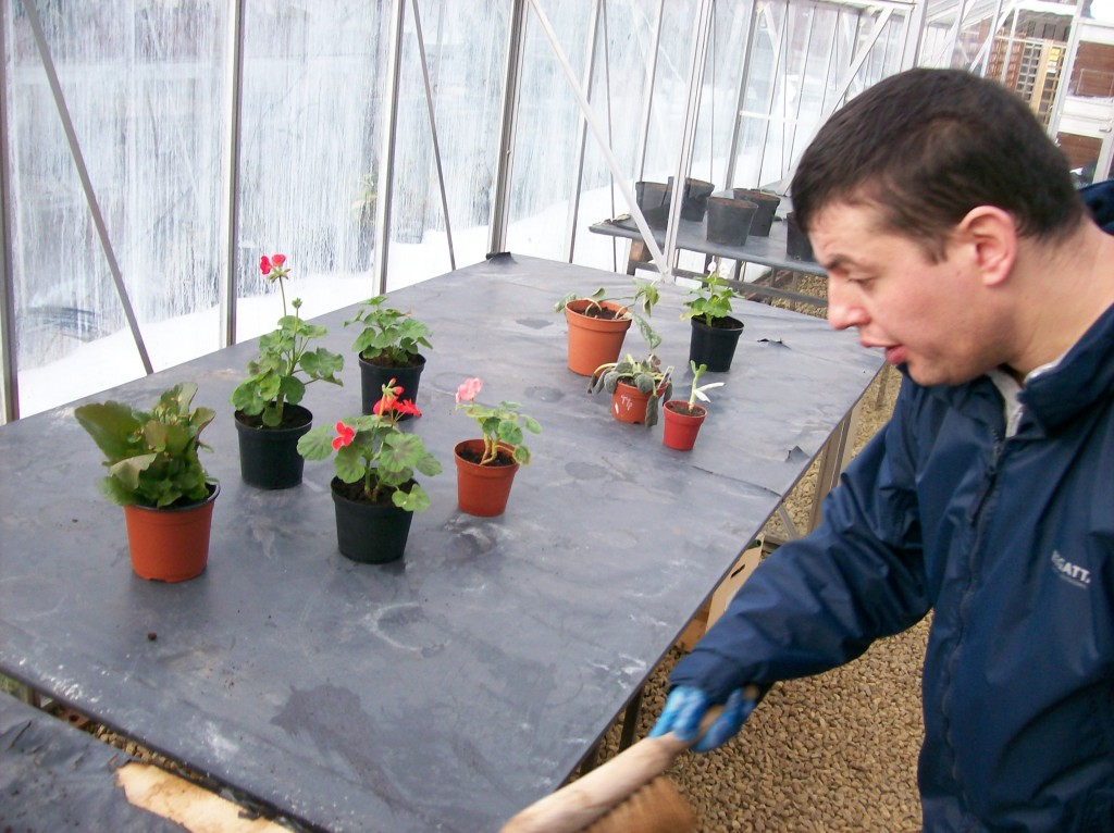 Matthew in potting shed